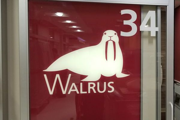 walrus graphic light box